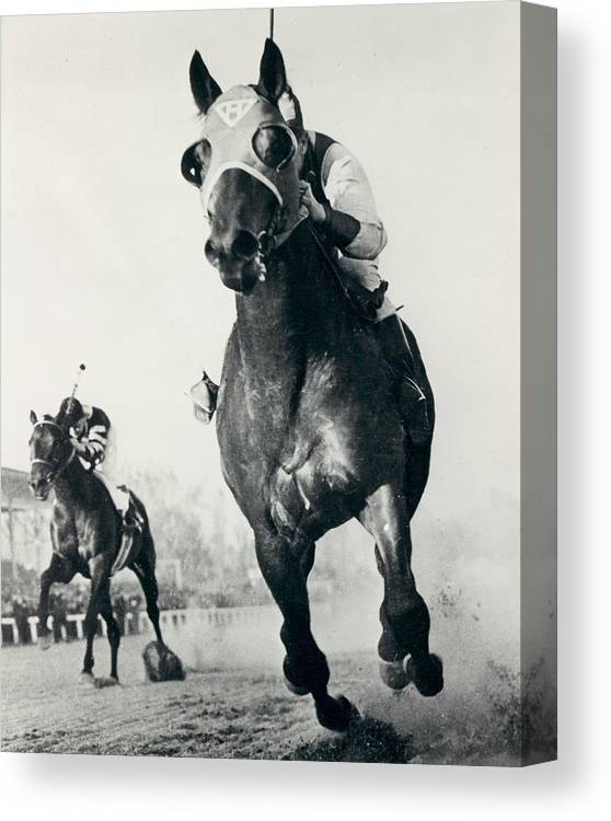 Classic Canvas Print featuring the photograph Seabiscuit Horse Racing #3 by Retro Images Archive