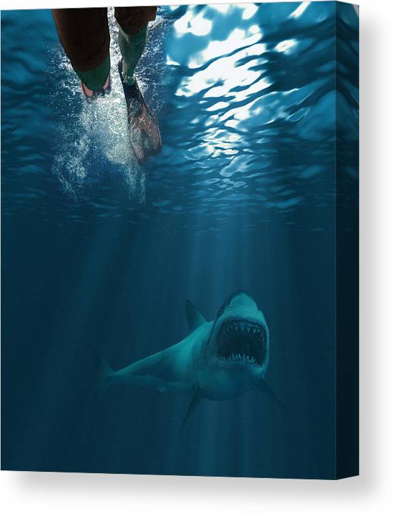Underwater Canvas Print featuring the photograph Shark attack by MediaProduction