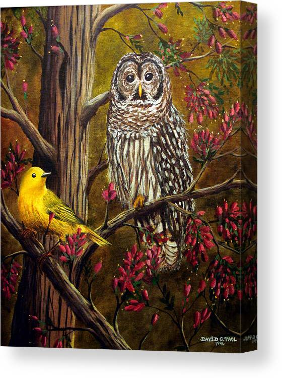 Bird Canvas Print featuring the painting The Owl and the Canary by David G Paul