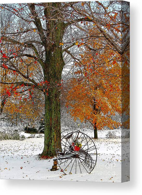Berry Canvas Print featuring the drawing To everything there is a season... by Diane E Berry