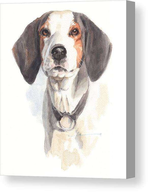 <a Href=http://miketheuer.com Target =_blank>www.miketheuer.com</a> Treeing Walker Coonhound Canvas Print featuring the drawing Treeing Walker Coonhound by Mike Theuer