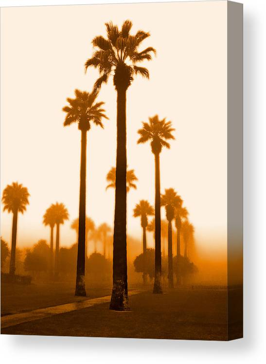 Canvas Print featuring the photograph Foggy Sunrise by Jim Painter