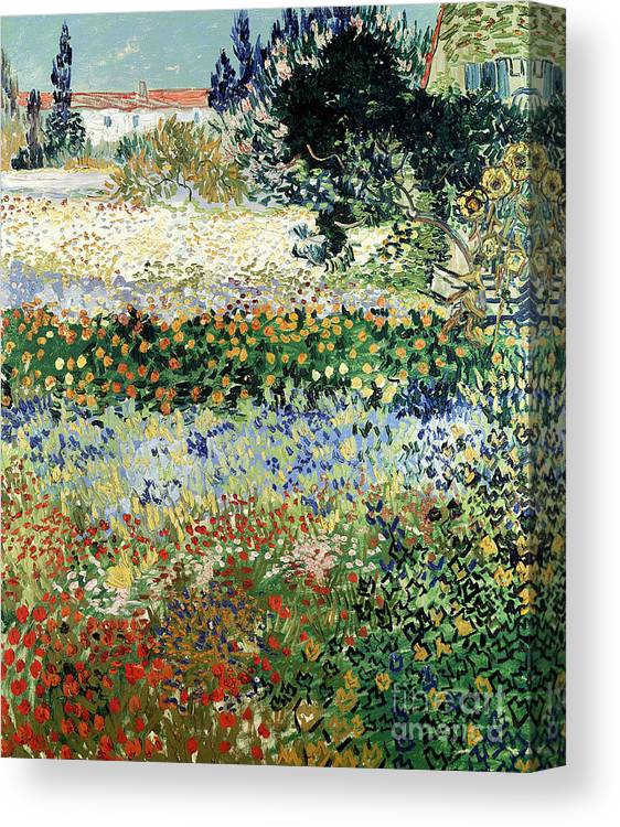 Garden In Bloom Canvas Print featuring the painting Garden in Bloom by Vincent Van Gogh