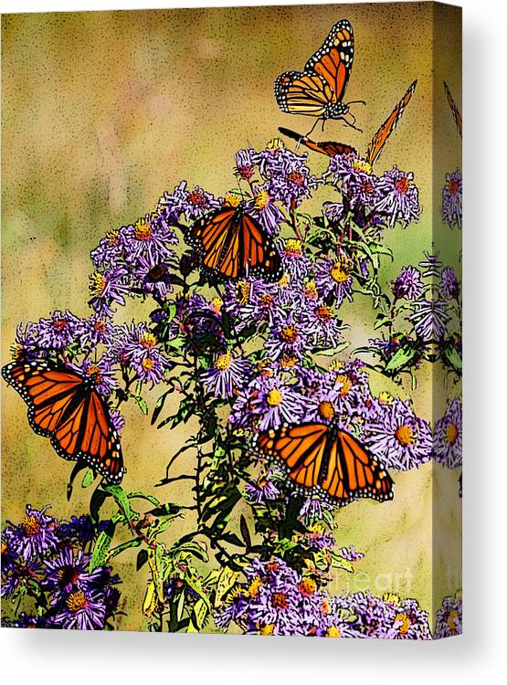 Diane Berry Canvas Print featuring the drawing Butterfly Party by Diane E Berry