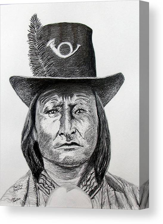 Indian Canvas Print featuring the drawing Chief Bird-Arapahoe by Stan Hamilton
