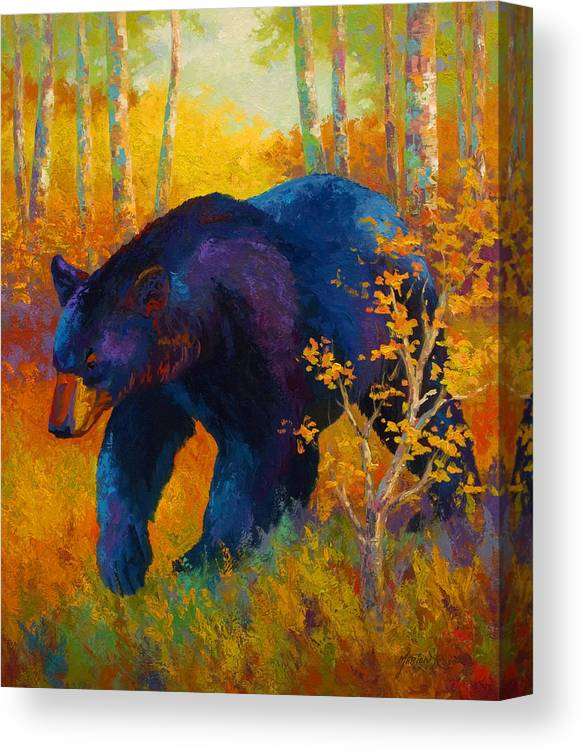 Bear Canvas Print featuring the painting In To Spring - Black Bear by Marion Rose