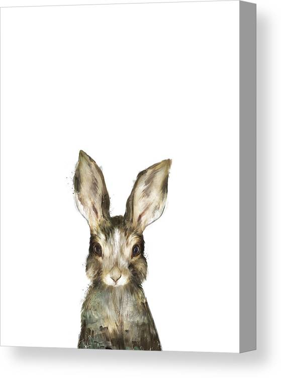 Rabbit Canvas Print featuring the painting Little Rabbit by Amy Hamilton