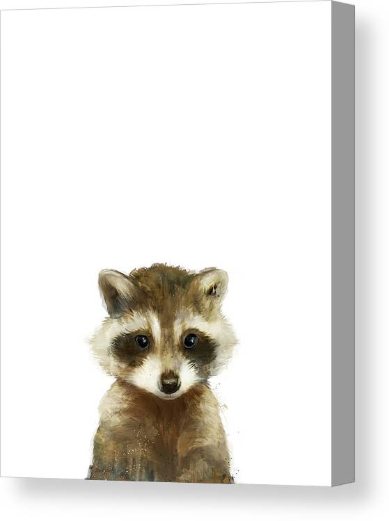 Raccoon Canvas Print featuring the painting Little Raccoon by Amy Hamilton