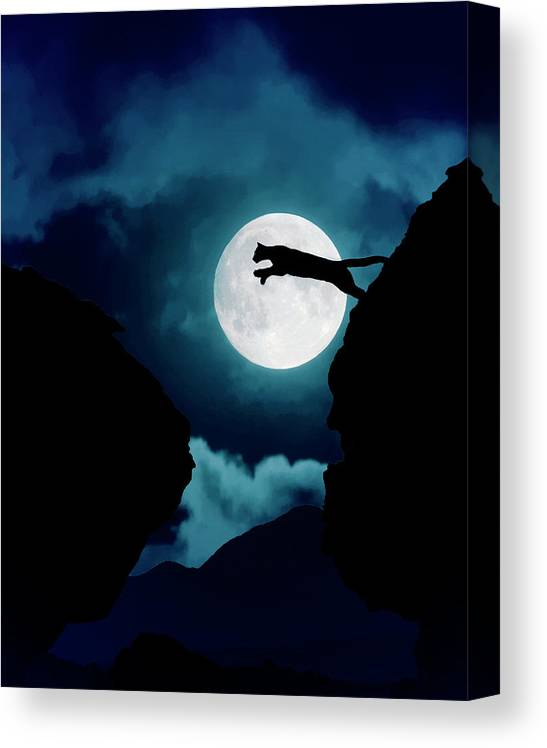 Mountain Lion Canvas Print featuring the photograph Moonlight Leap by Roy Nierdieck