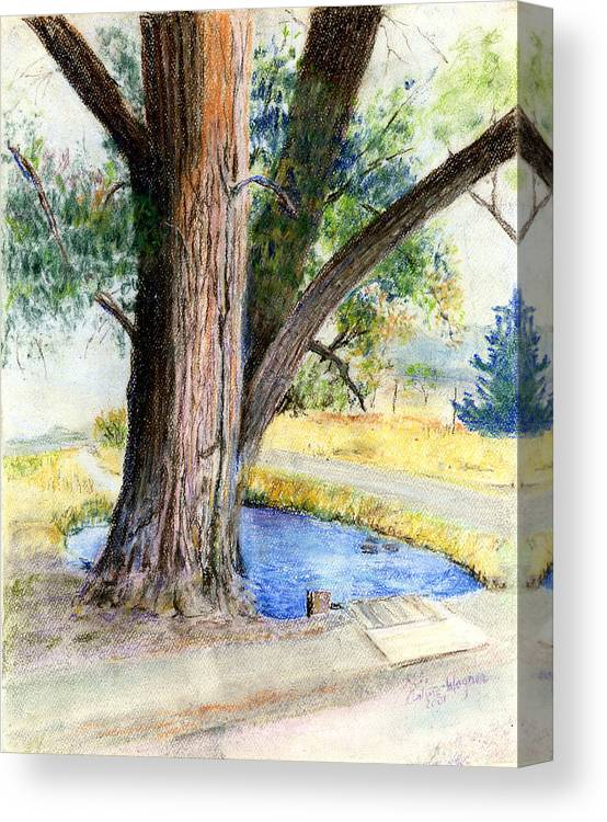 Tree Canvas Print featuring the pastel The Old Tree by Suzanne Blender