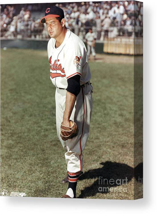 American League Baseball Canvas Print featuring the photograph Cleveland Indians by Mlb Photos