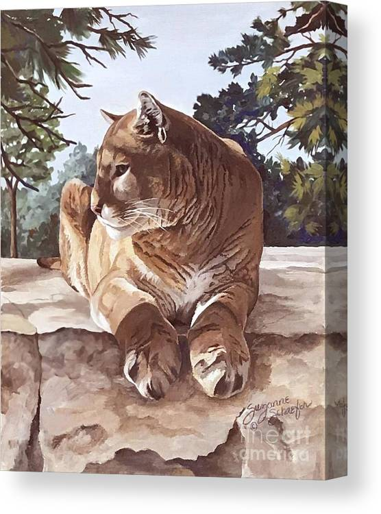 Cougar Canvas Print featuring the painting Cougar Outlook by Suzanne Schaefer