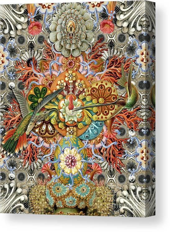 Hummingbird Canvas Print featuring the digital art Forms of Nature #1 by Kenneth Rougeau