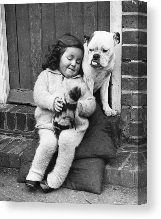 Pets Canvas Print featuring the photograph Girls Best Friend by Fox Photos