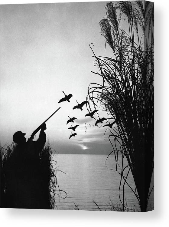 Rifle Canvas Print featuring the photograph Man Duck-hunting by Stockbyte