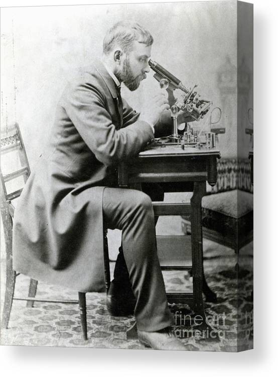 Young Men Canvas Print featuring the photograph Medical Student At Microscope by Bettmann