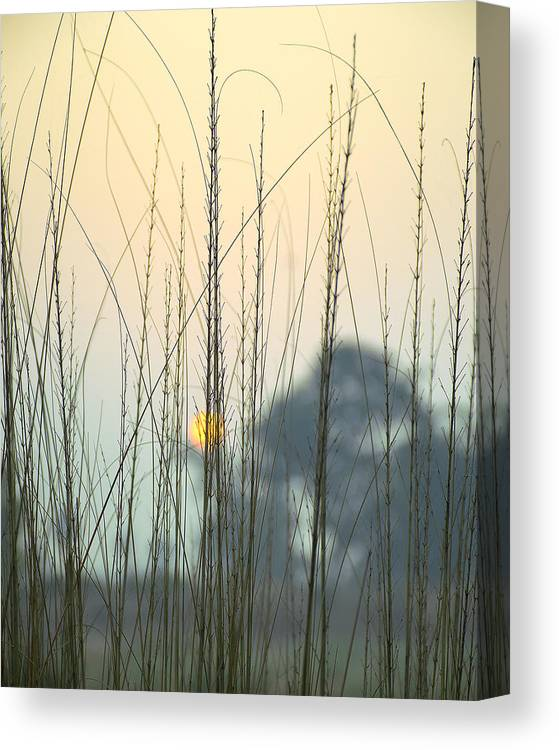 Landscape Canvas Print featuring the photograph morning Star by Ravi Bhardwaj