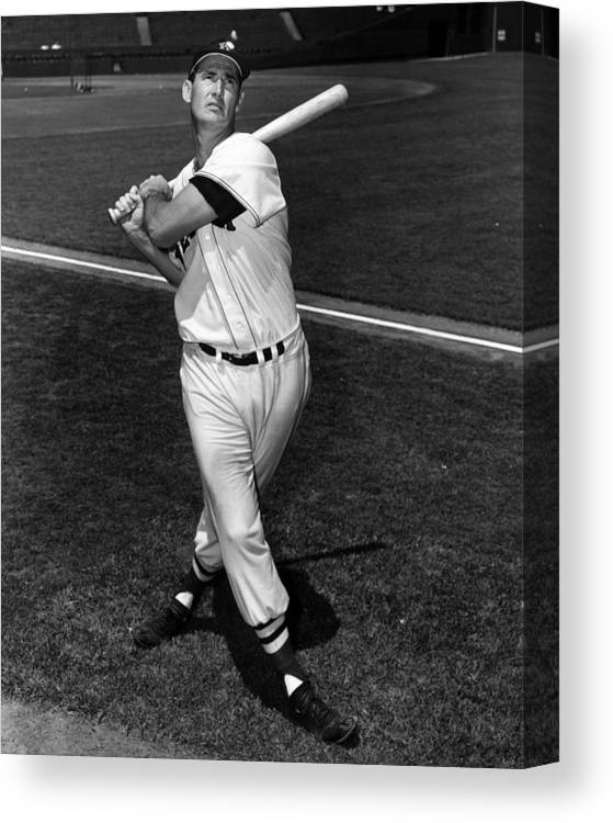 People Canvas Print featuring the photograph Ted Williams by Hulton Archive