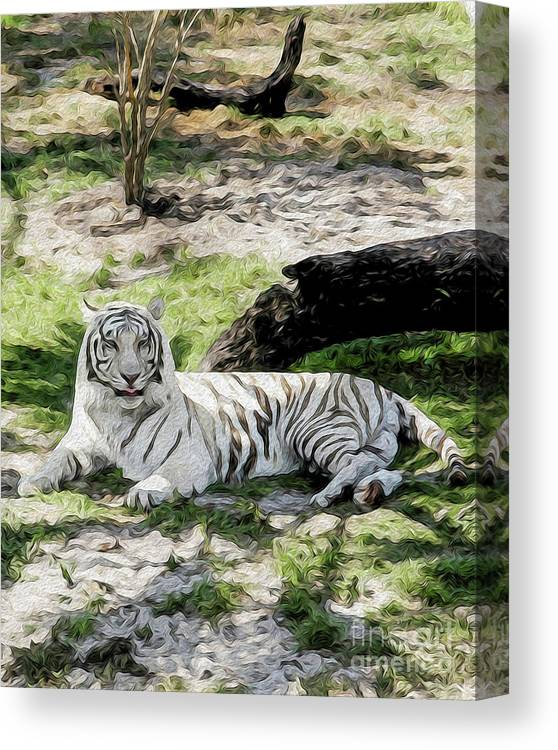 Nature Canvas Print featuring the digital art White Tiger at Rest by Kenneth Montgomery