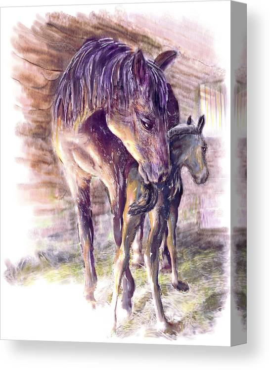 Horse Canvas Print featuring the painting Maternal Bond Five Hours Old Arabian Mare With Newborn Foal by Connie Moses