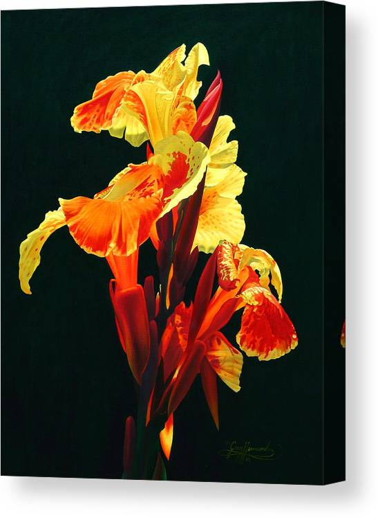 Flowers Canvas Print featuring the painting Yellow Cannas by Gary Hernandez