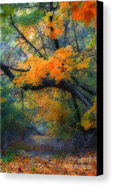 Autumn Canvas Print featuring the photograph Autumn 4 by Jeff Breiman
