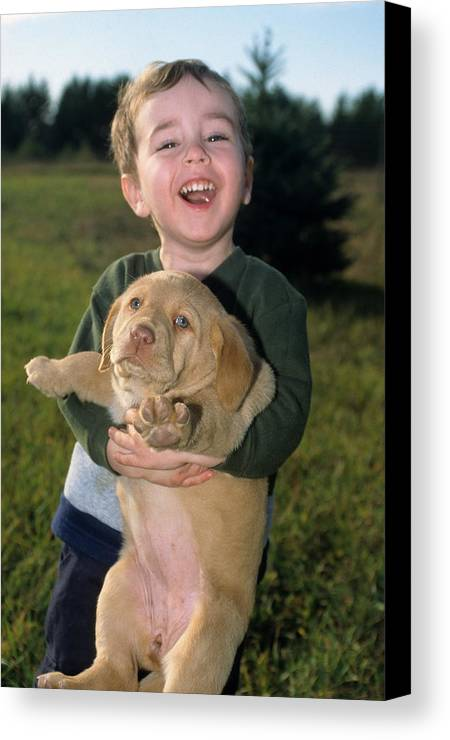 Labrador Retriever Canvas Print featuring the photograph Don't Squeese Me So Hard by Mike Gnatkowski