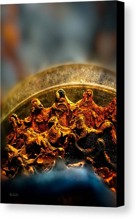 Gear Canvas Print featuring the photograph Muddy Rusty Sprockets by Bob Orsillo