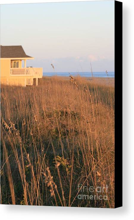 Relaxation Canvas Print featuring the photograph Relaxation by Nadine Rippelmeyer