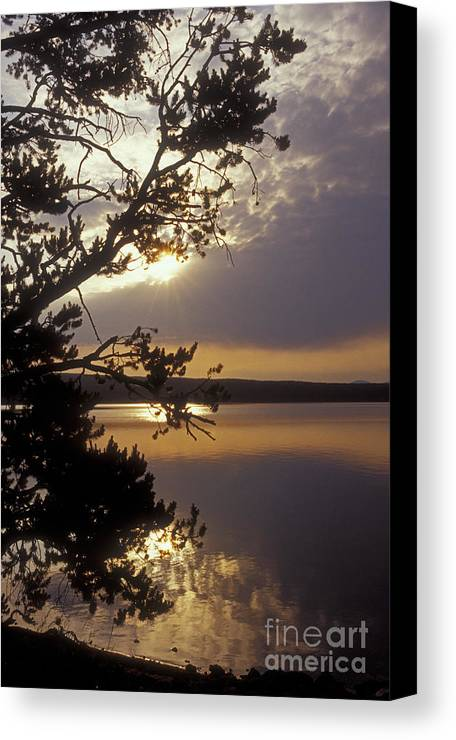 Yellowstone Canvas Print featuring the photograph Sunrise At Yellowstone Lake by Sandra Bronstein