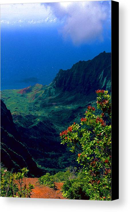 Hawaiian Cliffs Canvas Print featuring the photograph Hawaiian Cliffs by Ron Regalado