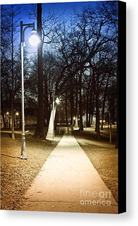 Park Canvas Print featuring the photograph Park Path At Night by Elena Elisseeva