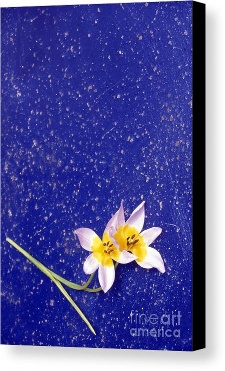 Abstract Canvas Print featuring the photograph The Rough With The Smooth by Steve Outram