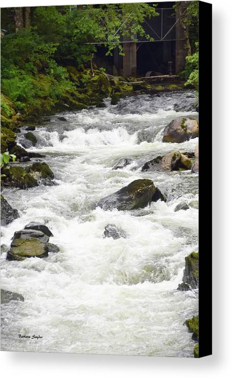Barbara Snyder Canvas Print featuring the photograph Ketchikan Creek Of Creek Street Fame by Barbara Snyder