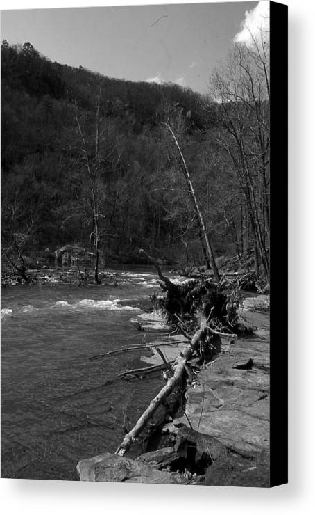 Canvas Print featuring the photograph Long-pool-log-jam by Curtis J Neeley Jr