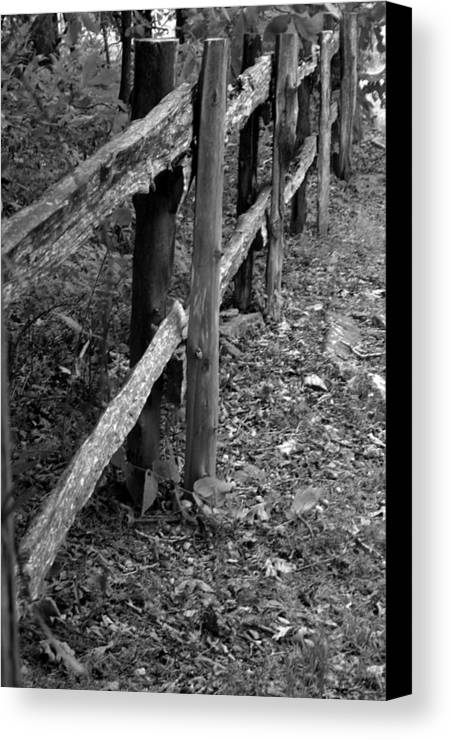 Ansel Adams Canvas Print featuring the photograph Momvisitfence-carterlane by Curtis J Neeley Jr
