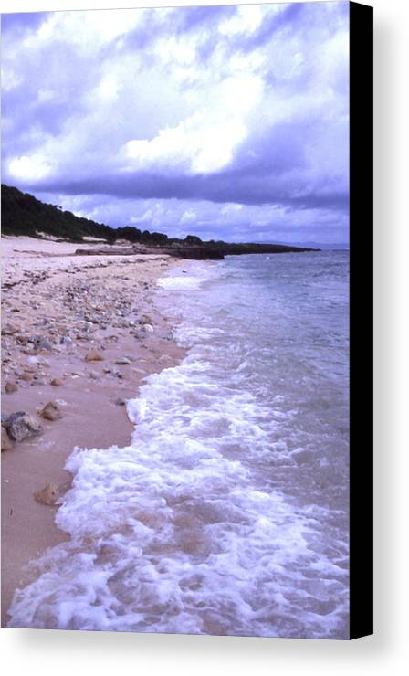 Okinawa Canvas Print featuring the photograph Okinawa Beach 17 by Curtis J Neeley Jr