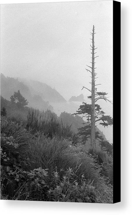 Oregon Canvas Print featuring the photograph Oregon Coast by Mark Fuller