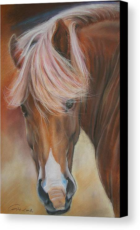 Animal Canvas Print featuring the painting Prince Charming by Dragan Gilic