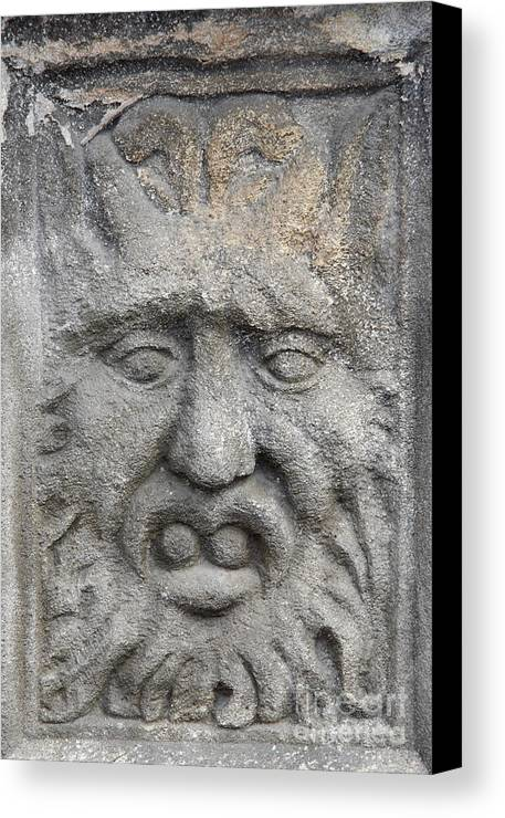 Plastic Canvas Print featuring the sculpture Stone Face by Michal Boubin