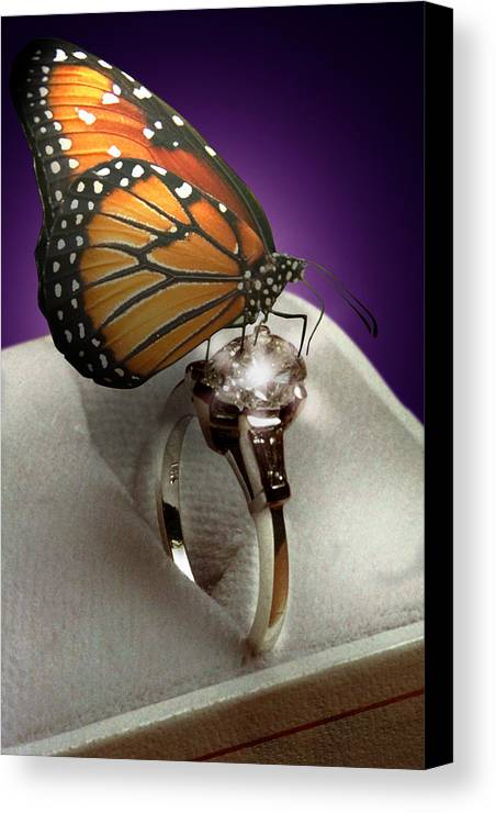 Fantasy Canvas Print featuring the photograph The Butterfly And The Engagement Ring by Yuri Lev