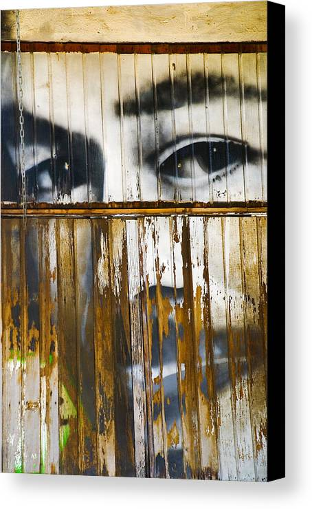 Escondido Canvas Print featuring the photograph The Walls Have Eyes by Skip Hunt