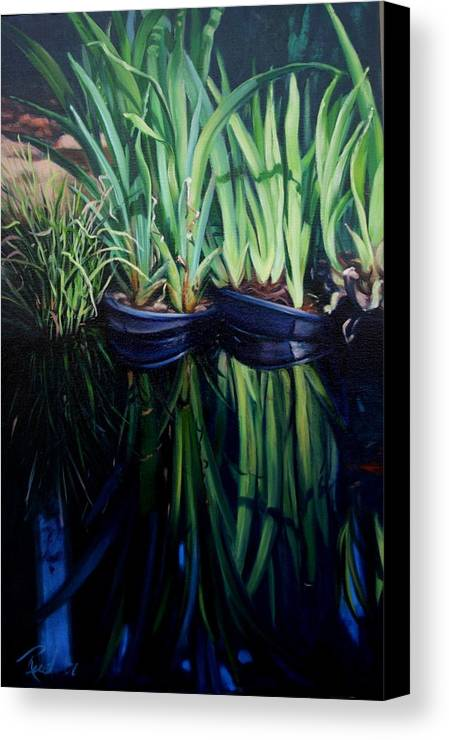 Landscape Canvas Print featuring the painting Water Garden Serie-h by Patricia Reed