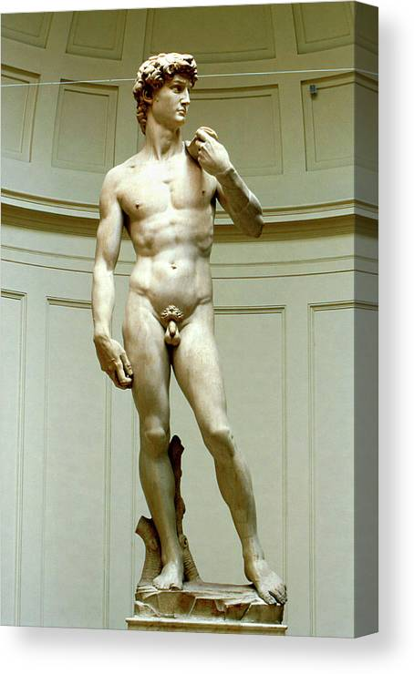 David Canvas Print featuring the photograph David By Michelangelo by Pasquale Sorrentino/science Photo Library