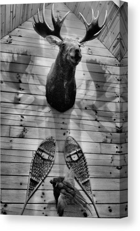 Cabins Canvas Print featuring the photograph Moose Cabin by Dan Sproul