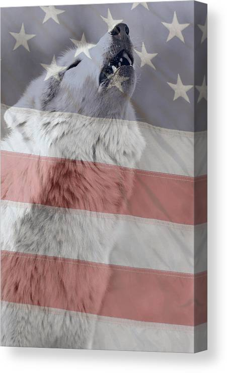 Wolf Canvas Print featuring the photograph Never Forget by Shari Jardina