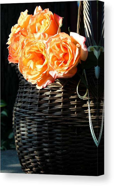 Roses Canvas Print featuring the photograph Thankful by The Art Of Marilyn Ridoutt-Greene