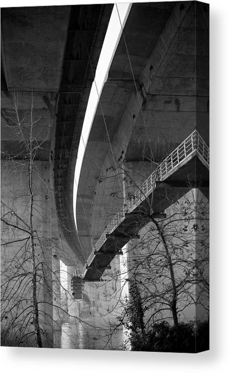 Black & White Canvas Print featuring the photograph Serpent Walk by Daniel Rogers