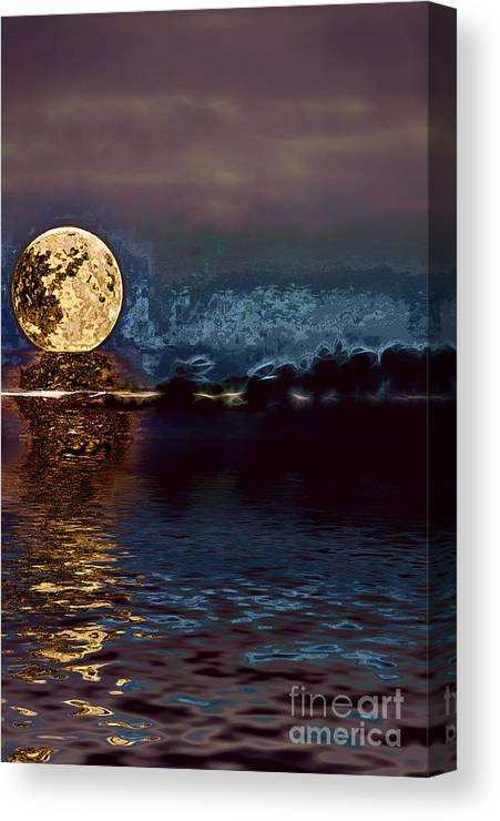 Moon Canvas Print featuring the photograph Golden Moon by Elaine Hunter