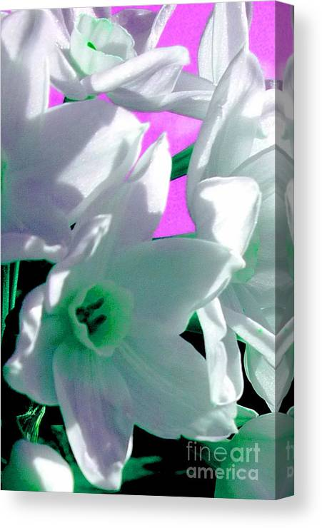 Nature Canvas Print featuring the photograph Sweet Surrender by JoAnn SkyWatcher